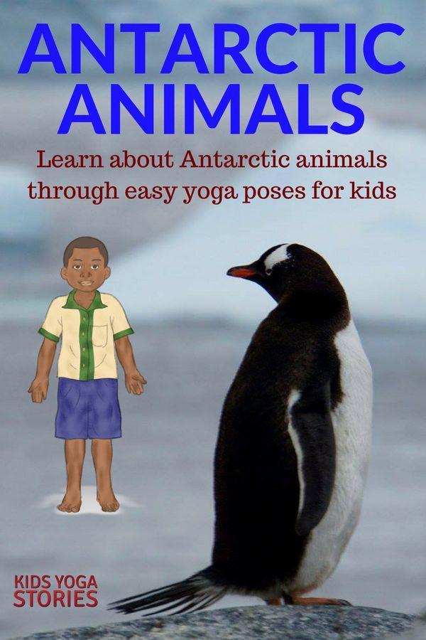 Antarctic Animals Yoga Poses for Kids | Kids Yoga Stories
