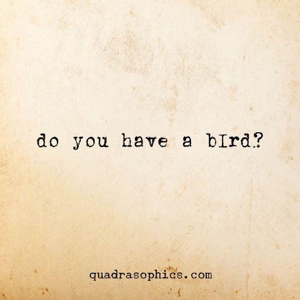 #denglish #geschenkartikel #quotes #sprüche #weiheiten #quadrat #humor #tweda #quadrasophics