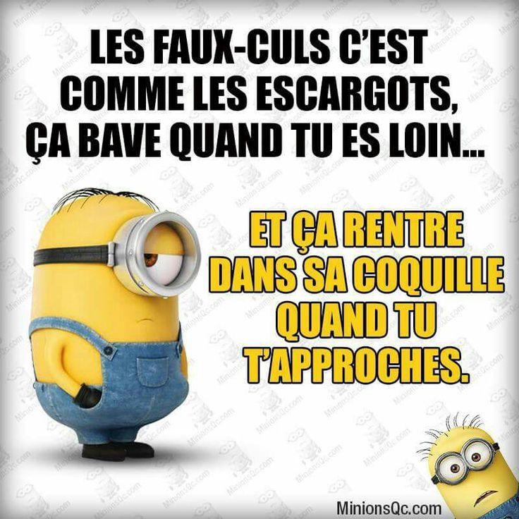 17 Best Images About ~Minion ~ On Pinterest
