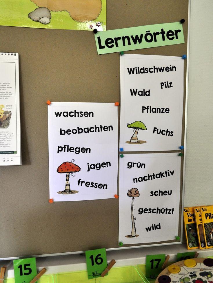 Seit der zweiten Klassenstufe beschäftigen wir uns ganz eifrig mit Lernwörtern. Sie sind immer angelehnt an das aktuelle Heimat- und Sachkun...