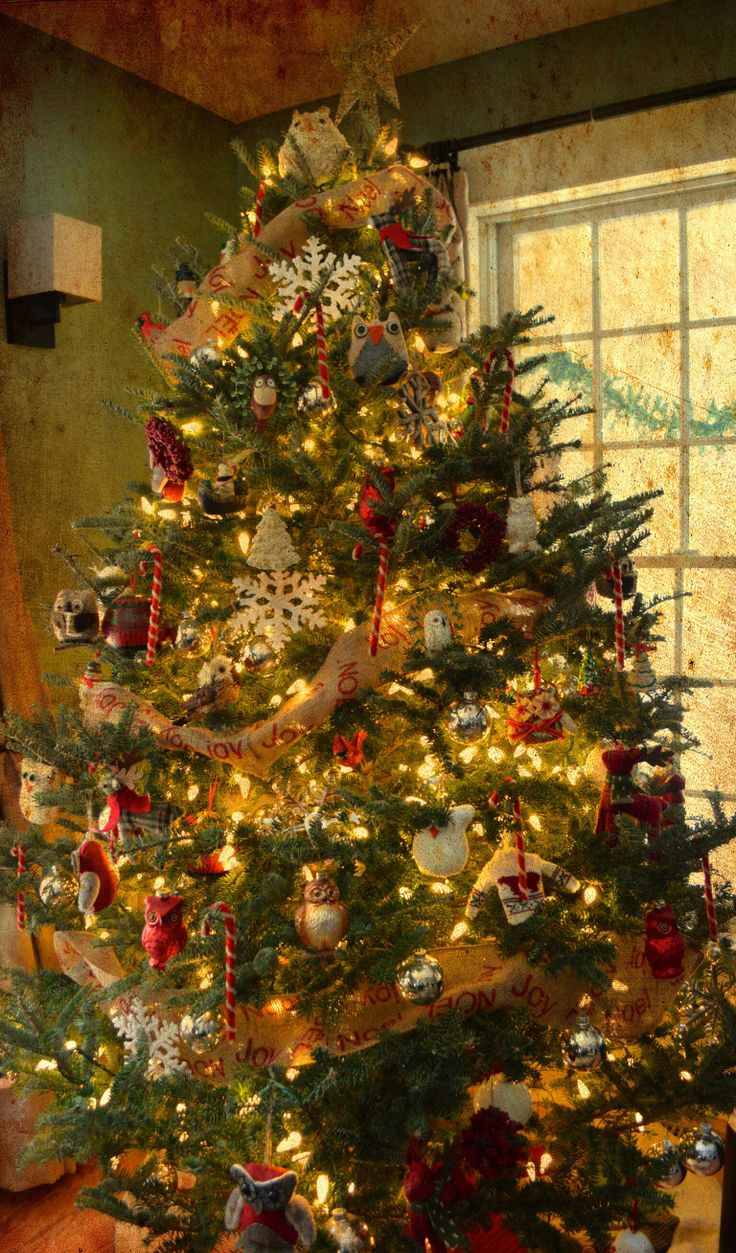 12 best vintage rustic pictures images on pinterest for Best looking christmas tree