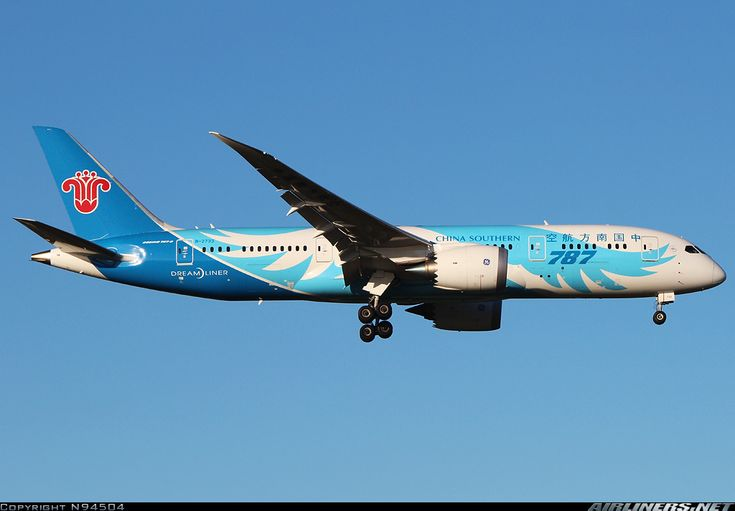 China SOuthern Airlines B-2733 Boeing 787-8 Dreamliner aircraft picture