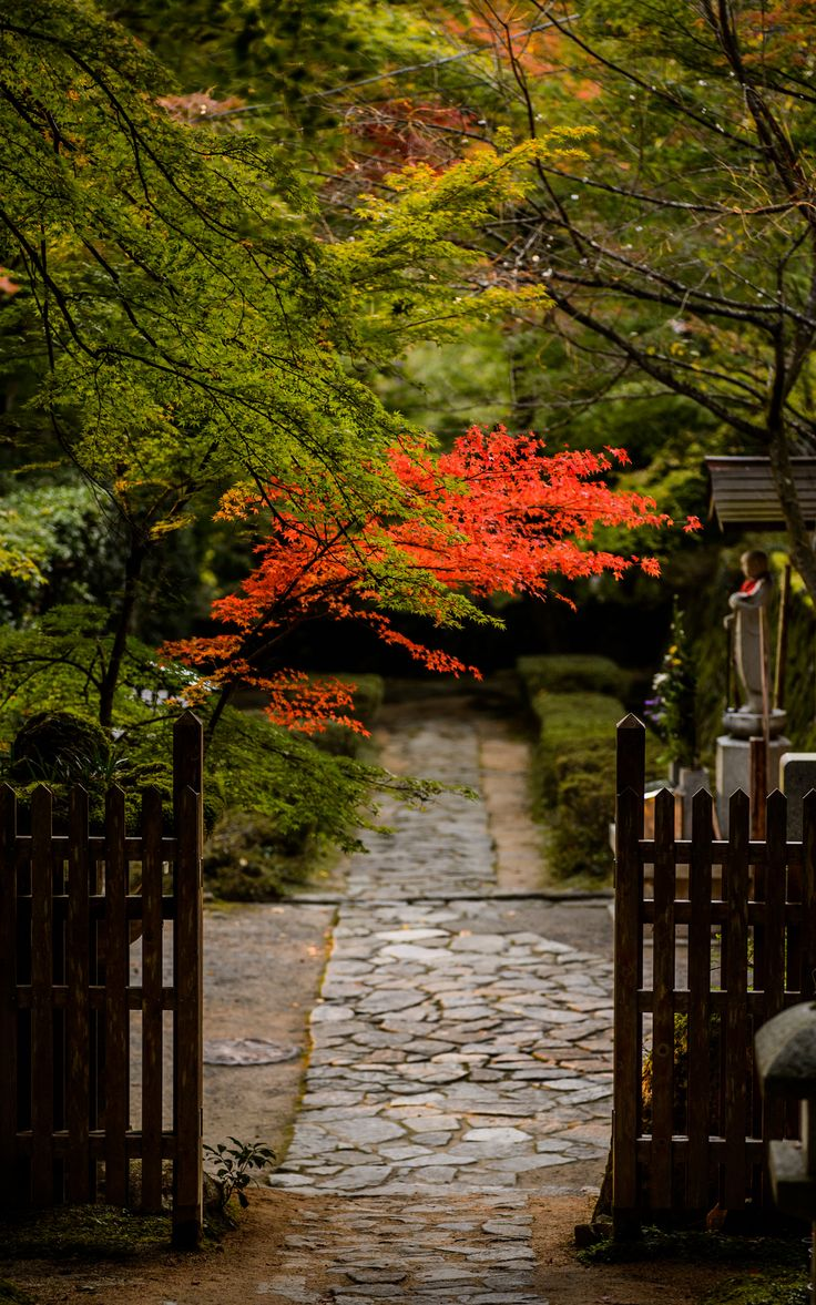 Japan Garden. I can barely breathe, this is so pretty.