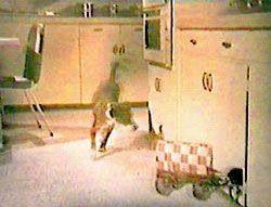 1970s chuck wagon dog food commercial