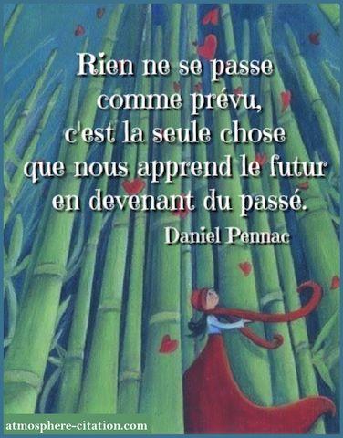 Rien ne se passe comme prévu, c'est la seule chose que nous apprend le futur en devenant du passé. -Daniel Pennac