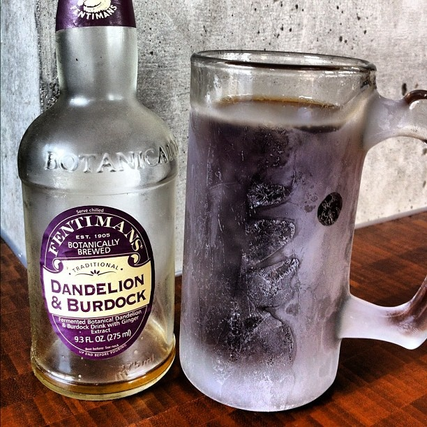 Dandelion And Burdock Soft Drink Benefits
