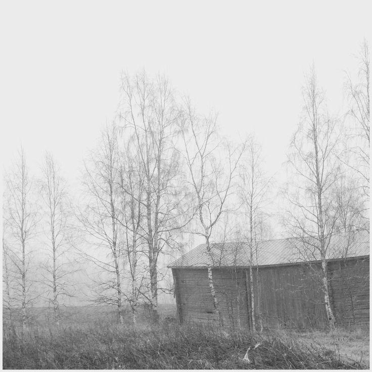 #Jurva #Finland