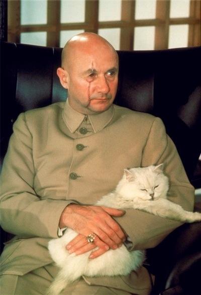 Ernst Stavro Blofeld + cat
