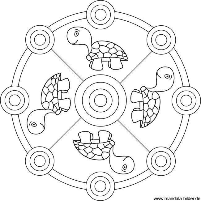 schildkröten mandala ausmalbild  ausmalbilder mandala