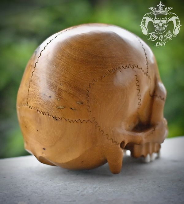 Rare One Of Kind Detail Live Size Carved Old Jackfruit Wood Human Skull No Jaw