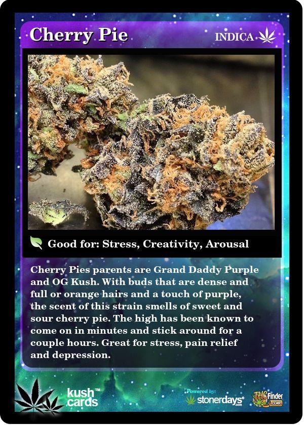 Cherry Pie | Repined By 5280mosli.com | Organic Cannabis College | Top Shelf Marijuana | High Quality Shatter