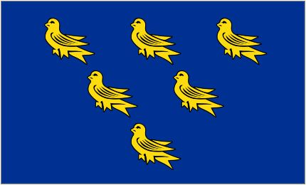 Flag Of Sussex.