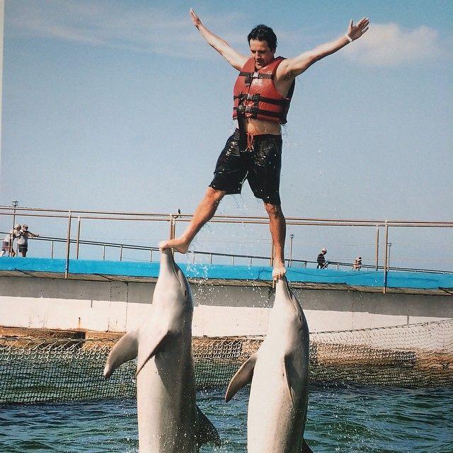 Saltando con delfines
