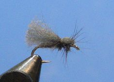 I love the Poly Caddis because it is fast to tie, rides high, can be pulled under to suggest a diving caddis, and catches fish. Gary LaFontaine used the Poly Caddis on a regular basis for just thos…