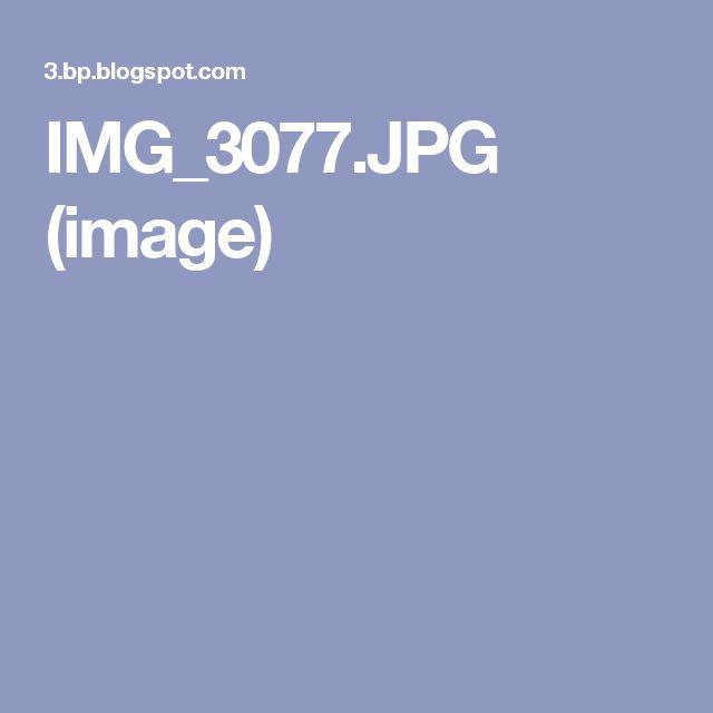 IMG_3077.JPG (image)
