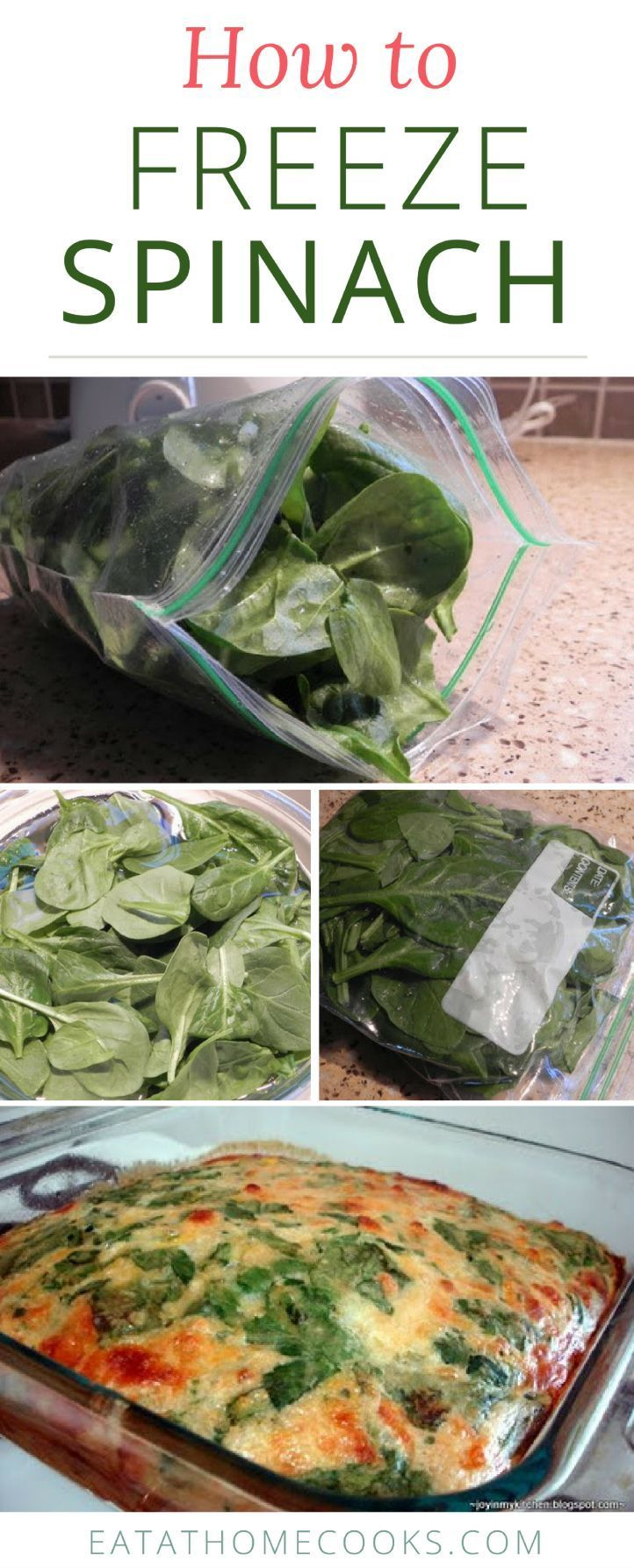 Time is a premium in my kitchen, so I wanted an easy, low-time investment way to preserve our spinach. We do so in three easy steps.