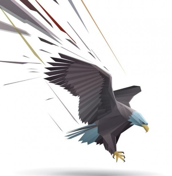 Landing Bald Eagle Vector Graphic - http://www.welovesolo.com/landing-bald-eagle-vector-graphic/