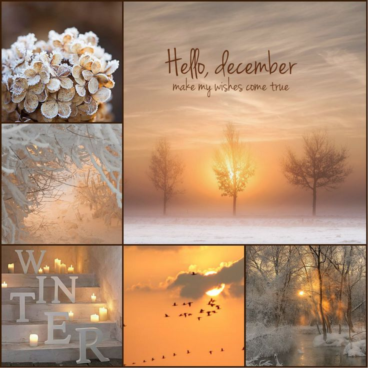 december, make my wishes come true