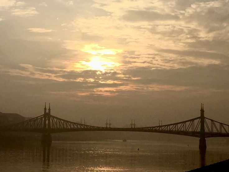 Szabadság híd hajnalban