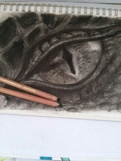 Smaug #thehobbit #thedesolationofsmaug #dragonseye #drawing #charcoal