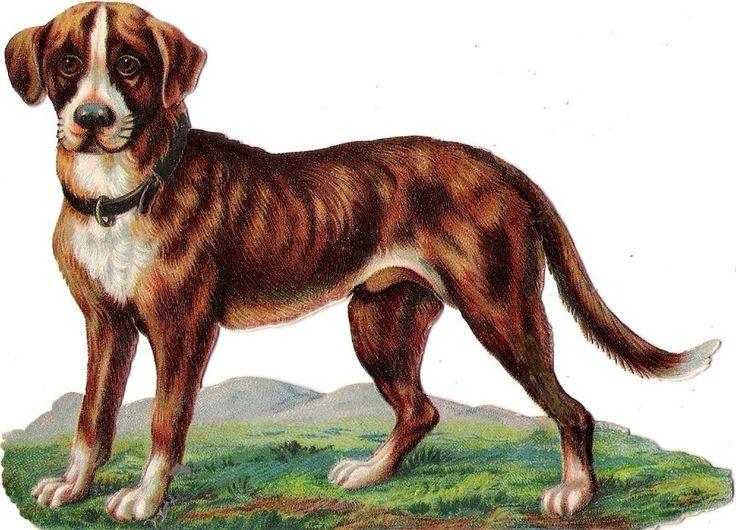 Oblaten Glanzbild scrap die cut chromo Hund  12,8  cm  dog chien
