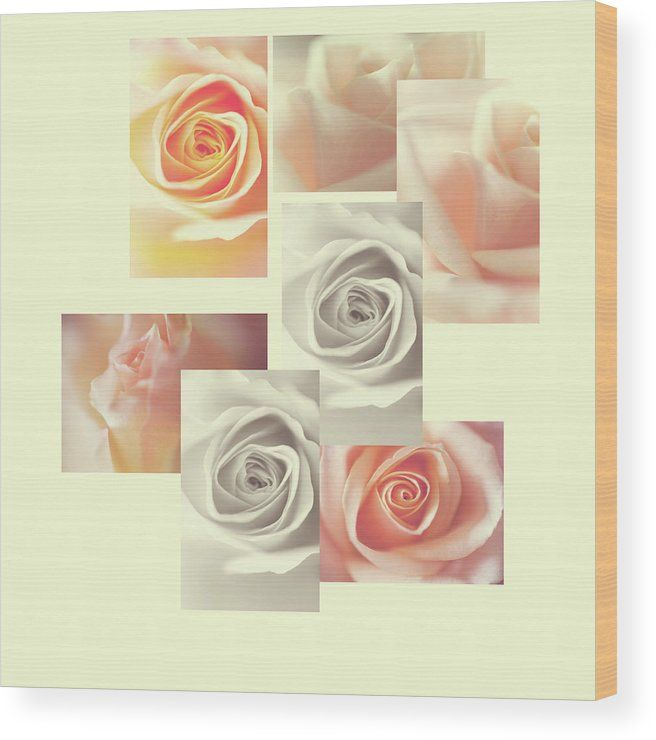Jenny Rainbow Fine Art Photography Wood Print featuring the photograph Creamy Dreamy Roses Collage. Stylish decorative rose collage wooden panel for home decor with Shabby chic touch. Wood prints available in different sizes to meet your require. Order and payment online, delivery, 30 days money back guaranty. To buy this artwork just click on image. #JennyRainbowFineArtPhotography