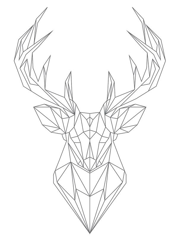 Geometric Deer furthermore Neon City Sketch 353486530 together with Geometric Flamingo as well Overlays also 2012 12 23 Lioness Roaring. on neon drawing