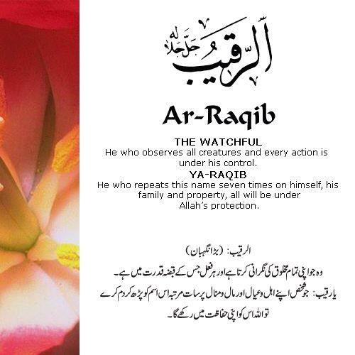AR-Raqib