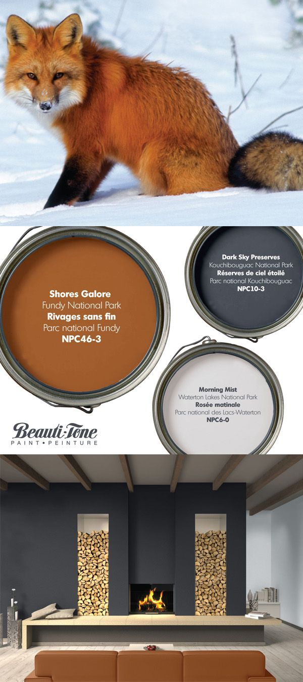 Winter blahs disappear with this #BeautiTone colour palette inspired by Parks Canada and the Canadian Red Fox.