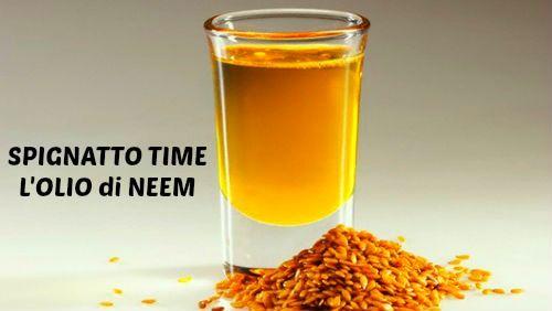 SPIGNATTO TIME: L'Olio di Neem