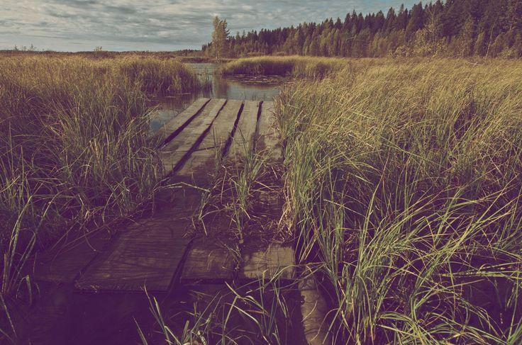 I miss summer by Mikko K on 500px