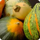 Winter Squash Types - Discover the most common types of winter squash and get recipes for preparing them.