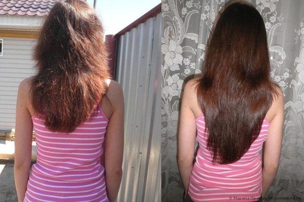 haj/élesztő