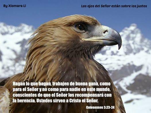 Los ojos del Señor están sobre los justos...Colosenses 3:23-24