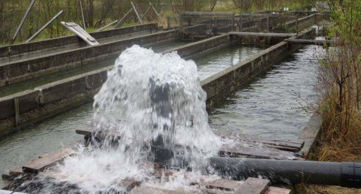SOURCE D'EAU ST-MATHIEU : Source d'eau d'une qualité exceptionnelle avec débit d'eau de 12 200 m3/jour. Potentiel pour eau potable ou pour pharmaceutique.