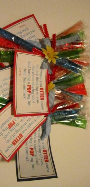 Otter Pops: Perfect Visiting Teaching gift