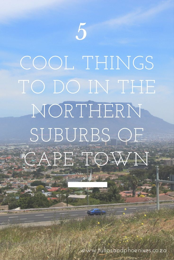The northern suburbs of Cape Town is not considered to be as cool as its southern suburbs counterpart. But that doesn't mean there's nothing to do! Click to find out more about 5 cool things to do in the northern suburbs of Cape Town.