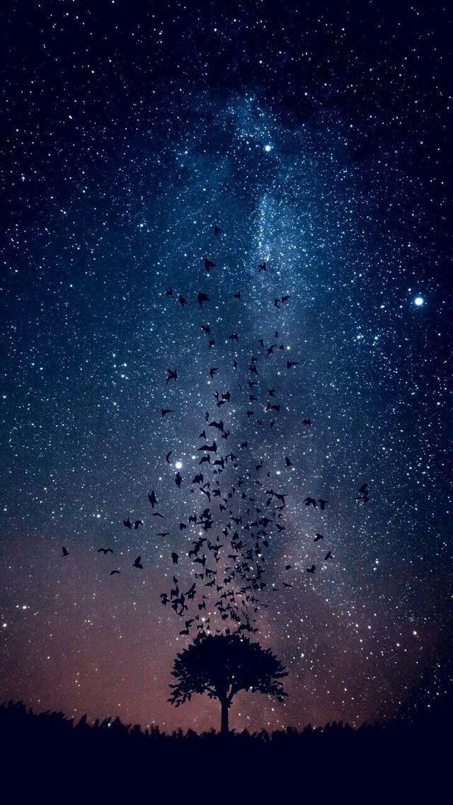 A Wallpaper I Ve Been Using Not Much Else To Say Lol Pemandangan Khayalan Fotografi Alam Langit Malam