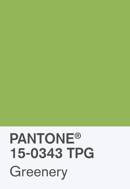 PantoneChipSize
