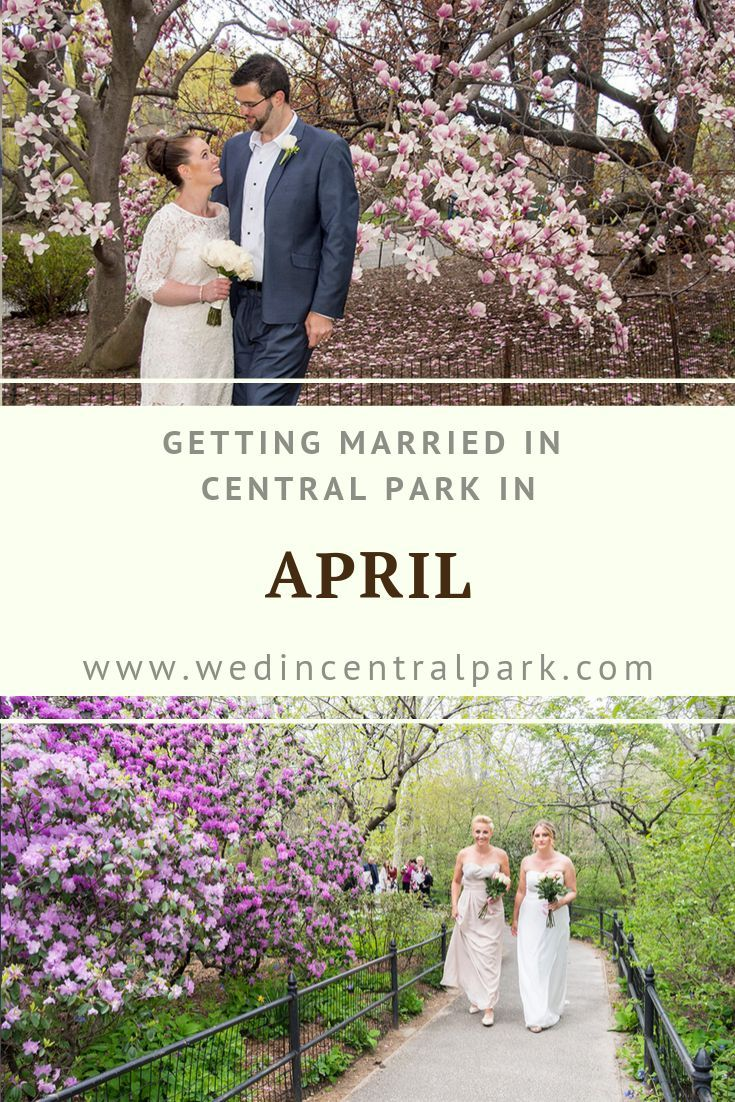 Getting Married In Central Park In April Central Park Weddings