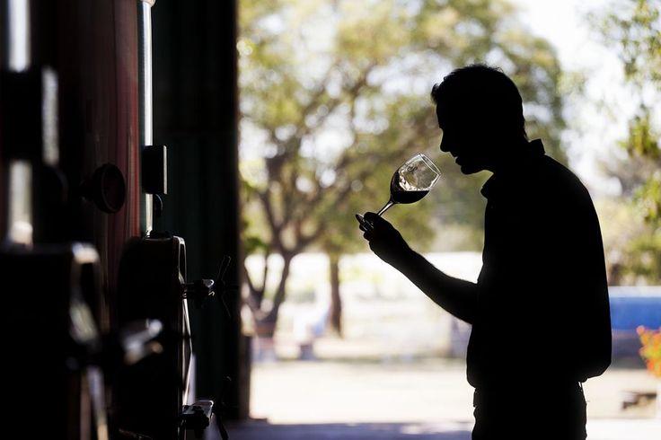 #Cordoba #TierraDeVinos  #ArgentinaEsTuMundo #wine #vino #turismo  Más info en http://www.facebook.com/viajaportupais