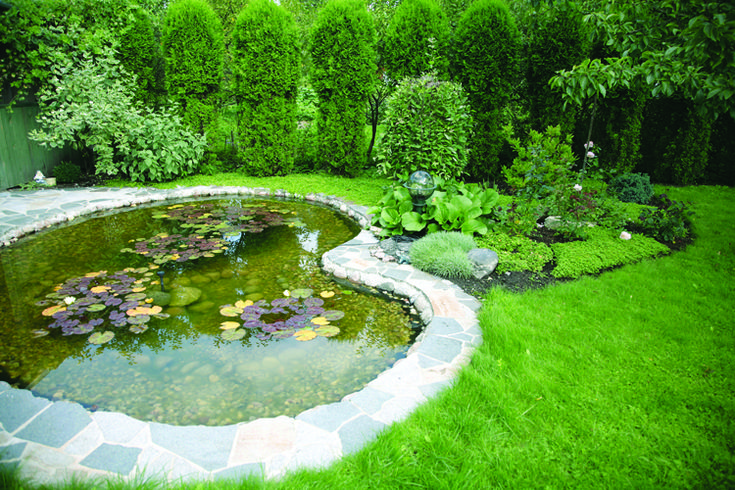 17 best images about pond styles on pinterest raised for Koi pool water gardens blackpool