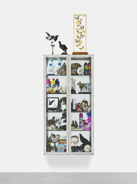 Damien Hirst - Signification