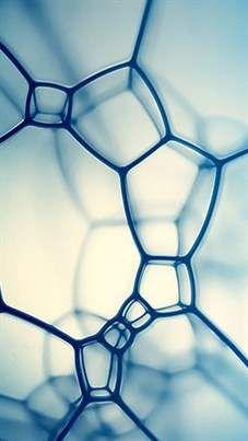 Cellule - Matrice