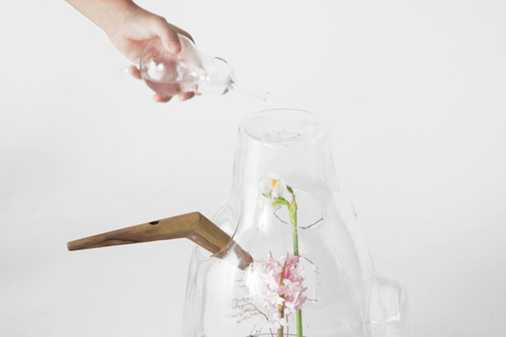 carissa santoso: the glass house for individual plants