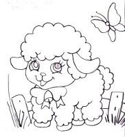risco de ovelhas
