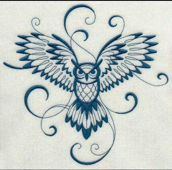Flight owl