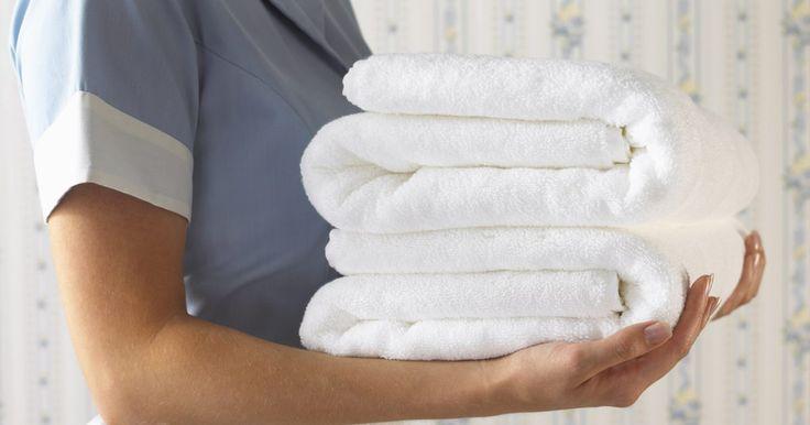 ¿Cuánto ganan las empleadas de limpieza en EE.UU.?. Las sirvientas, también conocidas como empleadas de limpieza, trabajan en hoteles, moteles y casas privadas. Ellas se encargan de limpiar baños, cambiar sábanas y cobijas de las camas, vaciar los botes de la basura y limpiar las alfombras. Estas profesionales de la limpieza también son responsables de cambiar los focos, lustrar los muebles, ...