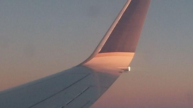 United Airlines Boeing 737-900ER Series Landing (Sunset) Chicago O'hare