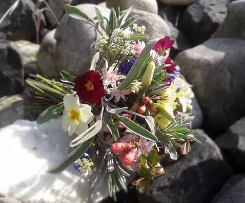 Spring, Primrose Hyacinth Narcisa